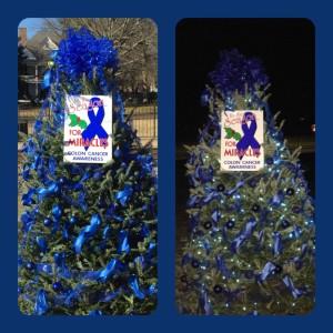 2015 Blue Tree
